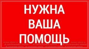 Сбор подписей в Москве, анонс