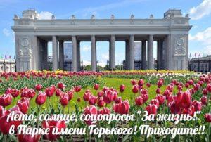 Соцопрос в Парке Горького. Москва. Нужны добровольцы!