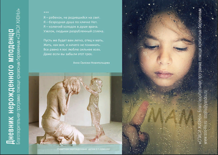 «Дневник нерожденного младенца»